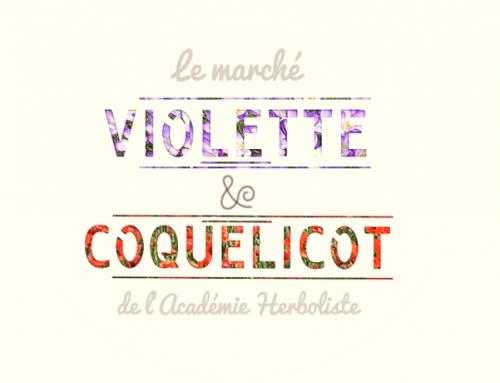 Marché Violette & Coquelicot 16 décembre 2017