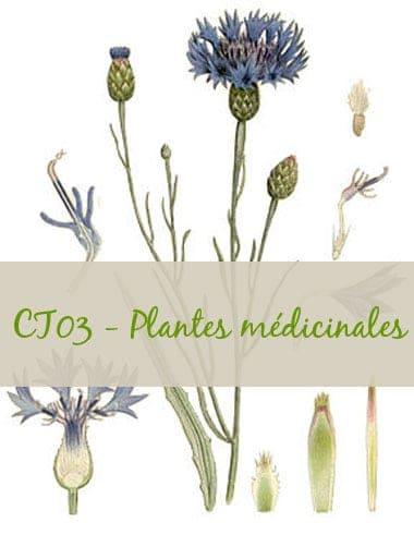 04-CT03-Plantes médicinales