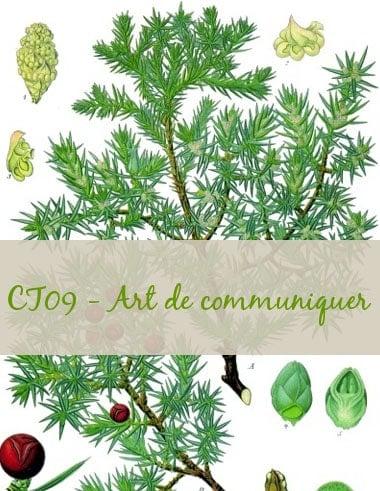 11-CT09-Art de communiquer