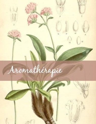 2. Guide-Conseil spécialisé en aromathérapie