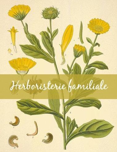 6. Guide-Conseil spécialisé en Herboristerie familiale