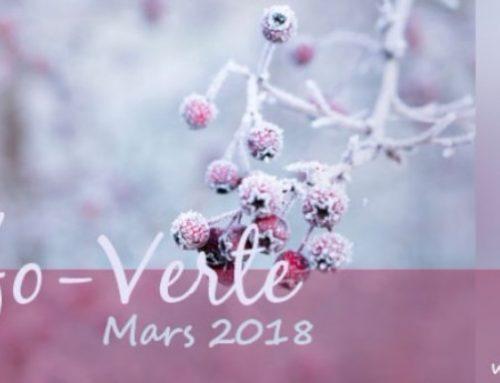 Info-Verte mars 2018 – Les vins médicinaux d'Hildegarde de Bingen