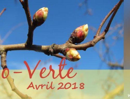 Info-Verte avril 2018 – Les plantes médicinales en cuisine
