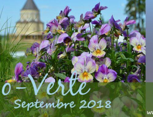 Info-Verte septembre 2018 – Nos ancêtres apothicaires