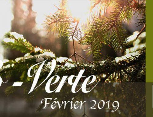 Info-Verte février 2019 – La communication entre plantes et animaux