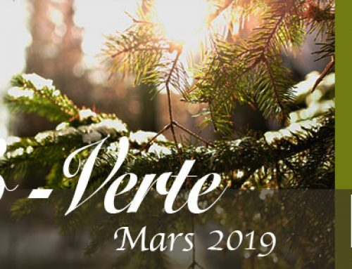 Info-Verte mars 2019 – L'intelligence végétale