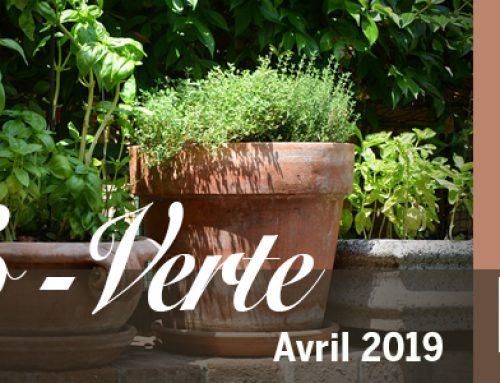 Info-Verte avril 2019 – Les neurotransmetteurs et la santé du cerveau