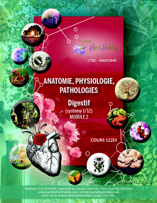 CT02-122 Cours Anatomie physiologie digestif