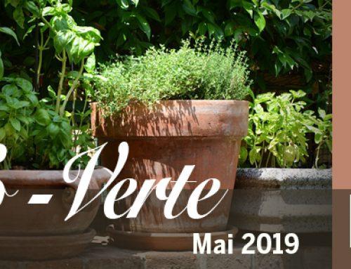Info-Verte mai 2019 – L'acétylcholine et la santé