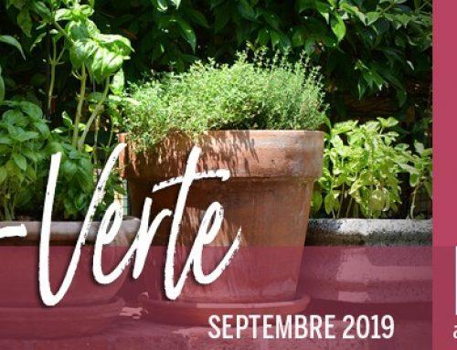Info-Verte – Septembre 2019 – La sérotonine et la santé