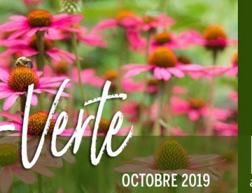 Info-Verte – Octobre 2019 – Les piliers de la santé en naturopathie
