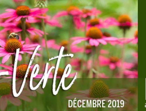 Info-Verte – Décembre 2019 – Les secrets des plantes