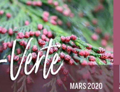 Info-Verte – Mars 2020 – Familles biochimiques des H.E. − Diathèse inflammation  −