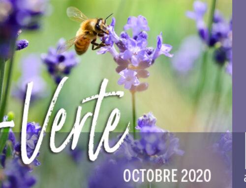 Info-Verte – Octobre 2020 – Les remèdes d'Hildegarde de Bingen